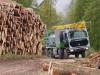 logging-gallery-dsc000391