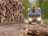 logging-gallery-dsc000401