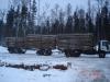 logging-gallery-hd8-euro3-84-40-141