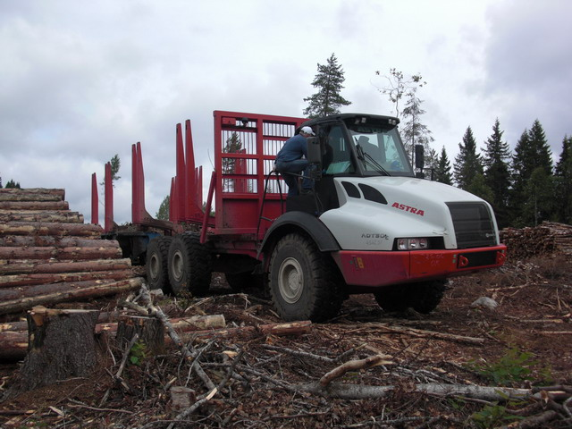 logging-gallery-cimg32671